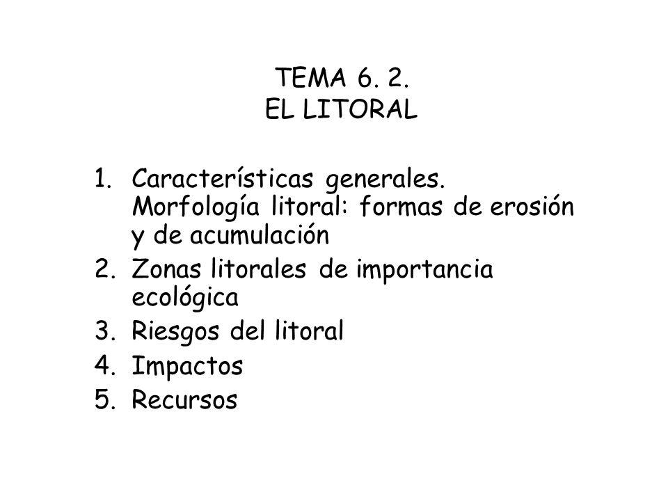 TEMA 6. 2. EL LITORAL Características generales. Morfología litoral: formas de erosión y de acumulación.