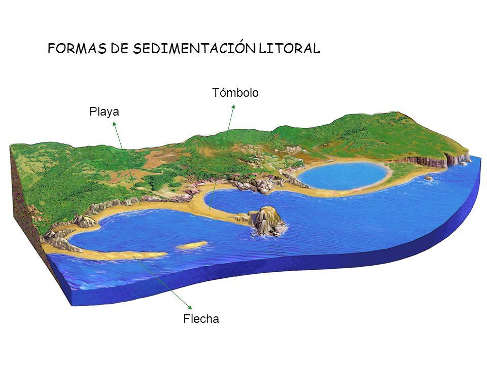 FORMAS DE SEDIMENTACIÓN LITORAL