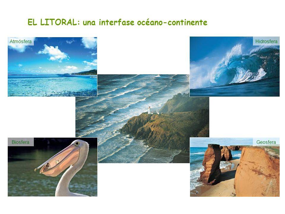 EL LITORAL: una interfase océano-continente