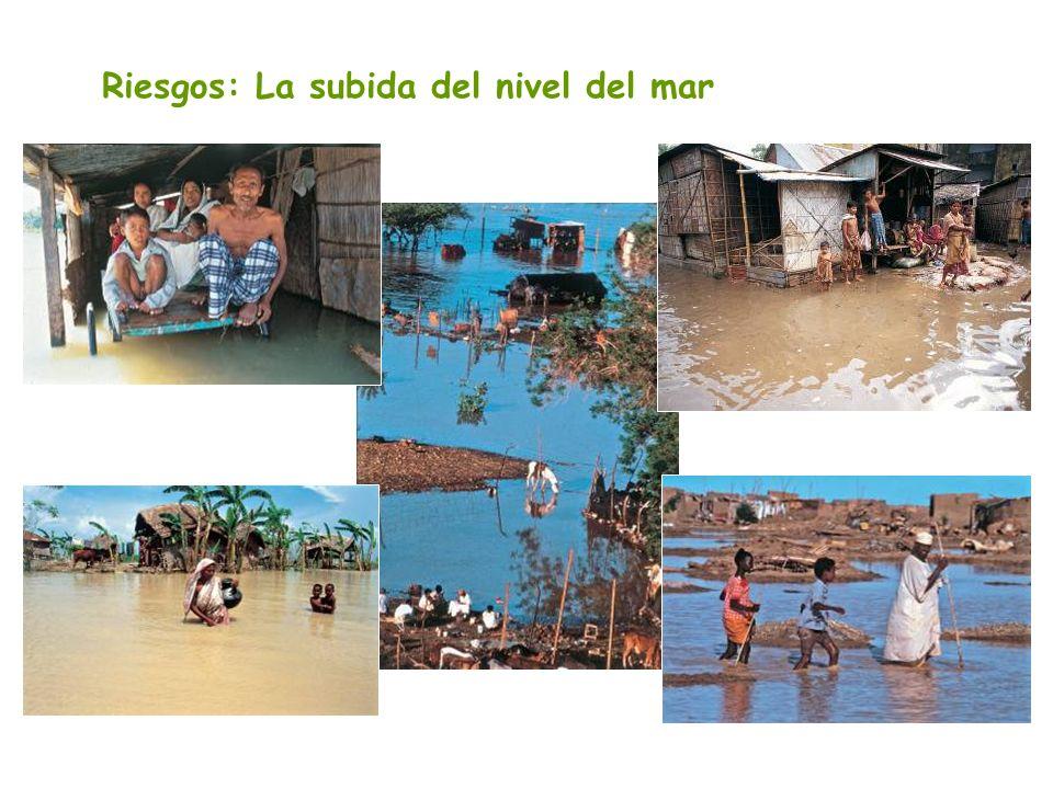 Riesgos: La subida del nivel del mar