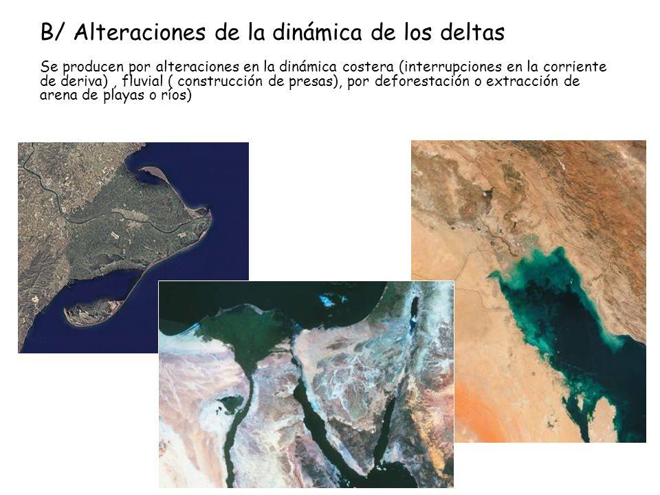 B/ Alteraciones de la dinámica de los deltas