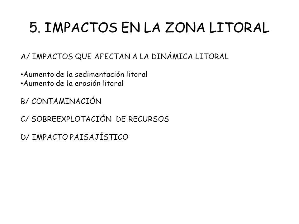 5. IMPACTOS EN LA ZONA LITORAL