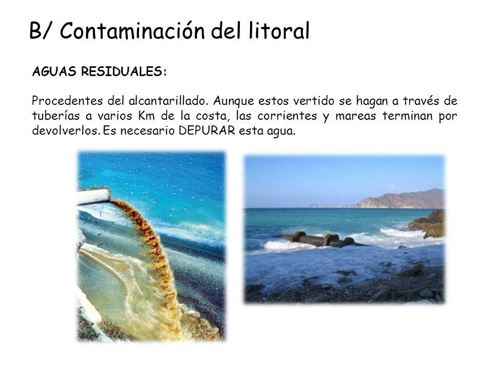 B/ Contaminación del litoral