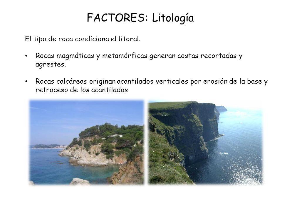 FACTORES: Litología El tipo de roca condiciona el litoral.