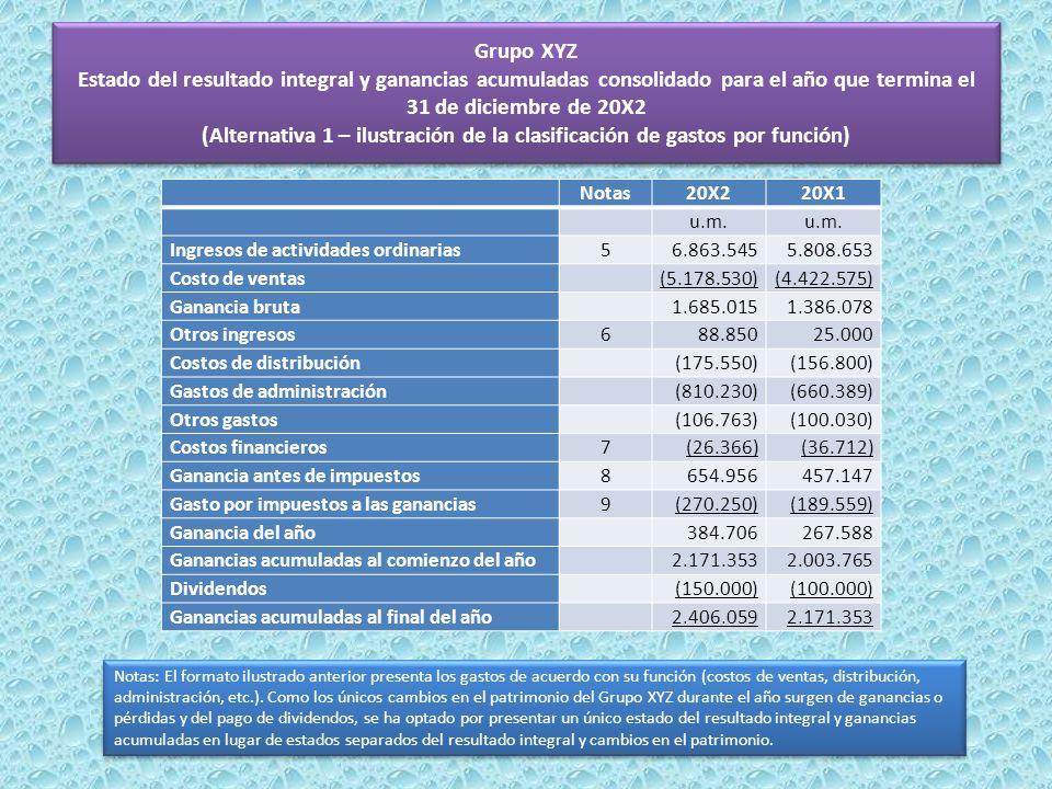 Grupo XYZ Estado del resultado integral y ganancias acumuladas consolidado para el año que termina el 31 de diciembre de 20X2 (Alternativa 1 – ilustración de la clasificación de gastos por función)