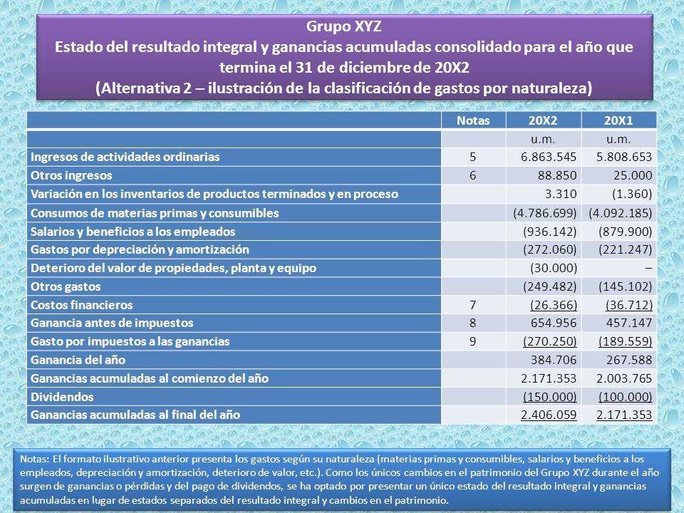 Grupo XYZ Estado del resultado integral y ganancias acumuladas consolidado para el año que termina el 31 de diciembre de 20X2 (Alternativa 2 – ilustración de la clasificación de gastos por naturaleza)