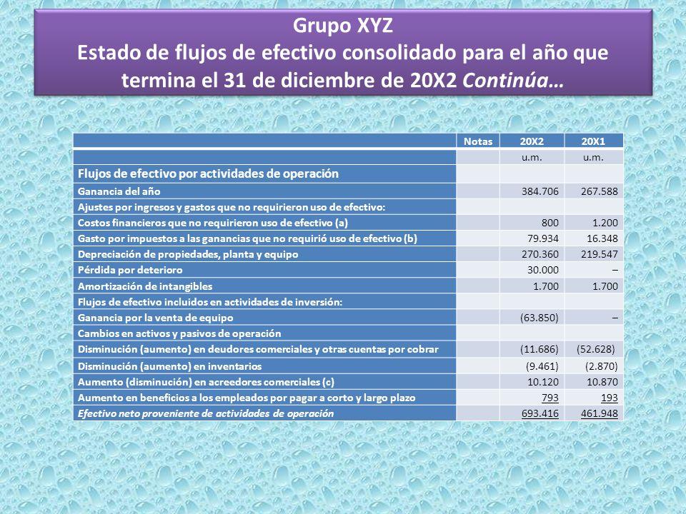 Grupo XYZ Estado de flujos de efectivo consolidado para el año que termina el 31 de diciembre de 20X2 Continúa…