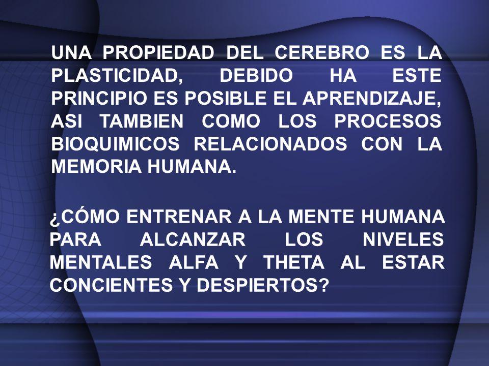 UNA PROPIEDAD DEL CEREBRO ES LA PLASTICIDAD, DEBIDO HA ESTE PRINCIPIO ES POSIBLE EL APRENDIZAJE, ASI TAMBIEN COMO LOS PROCESOS BIOQUIMICOS RELACIONADOS CON LA MEMORIA HUMANA.