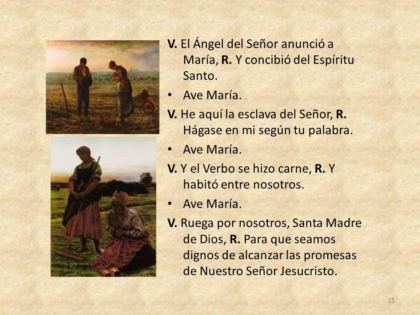 V. El Ángel del Señor anunció a María, R. Y concibió del Espíritu Santo.