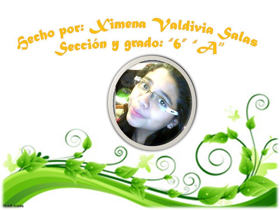 Hecho por: Ximena Valdivia Salas Sección y grado: 6 A