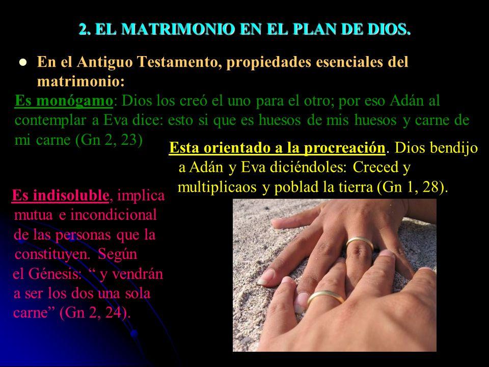 2. EL MATRIMONIO EN EL PLAN DE DIOS.