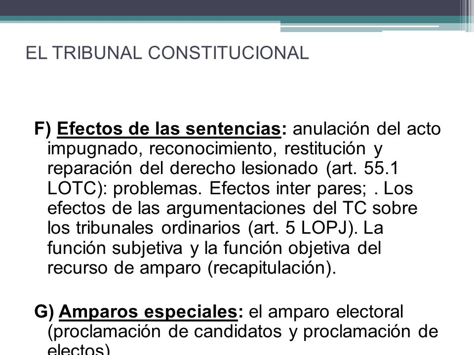 EL TRIBUNAL CONSTITUCIONAL
