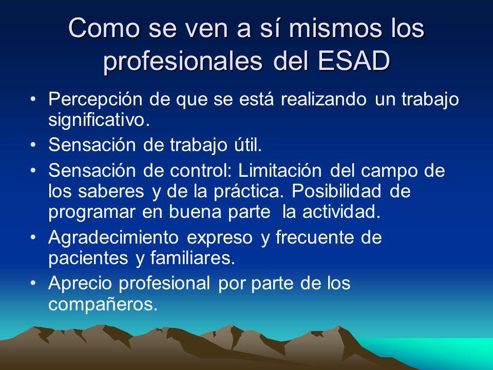 Como se ven a sí mismos los profesionales del ESAD