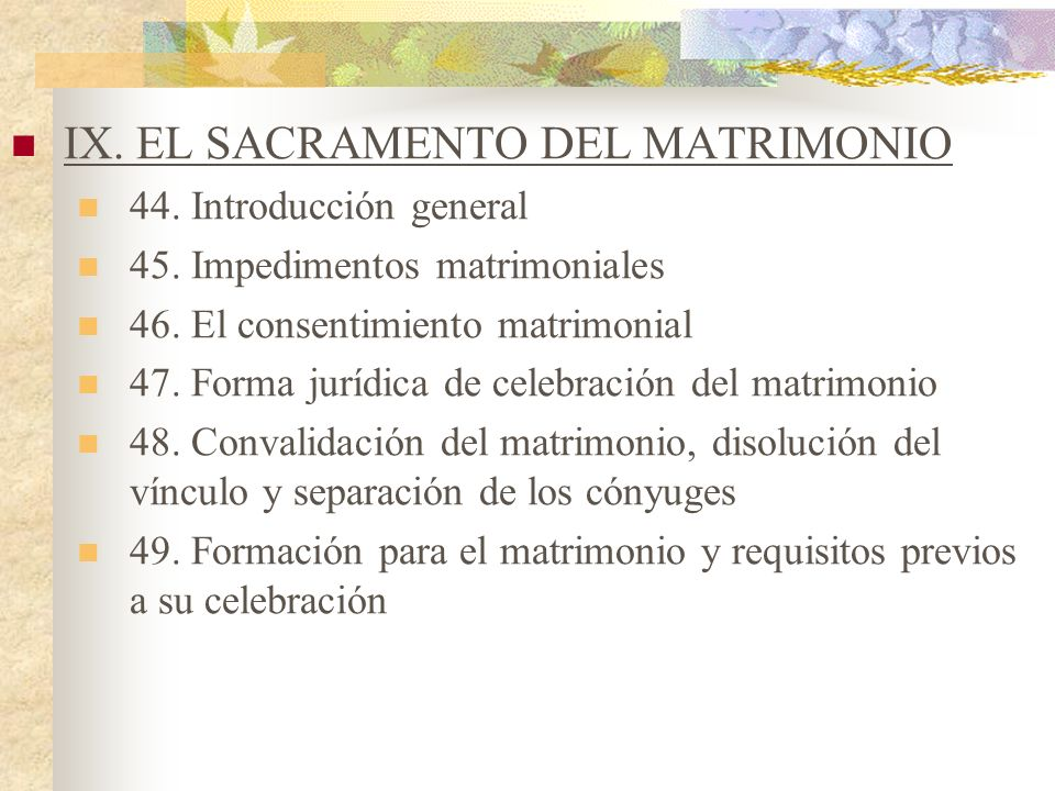 IX. EL SACRAMENTO DEL MATRIMONIO