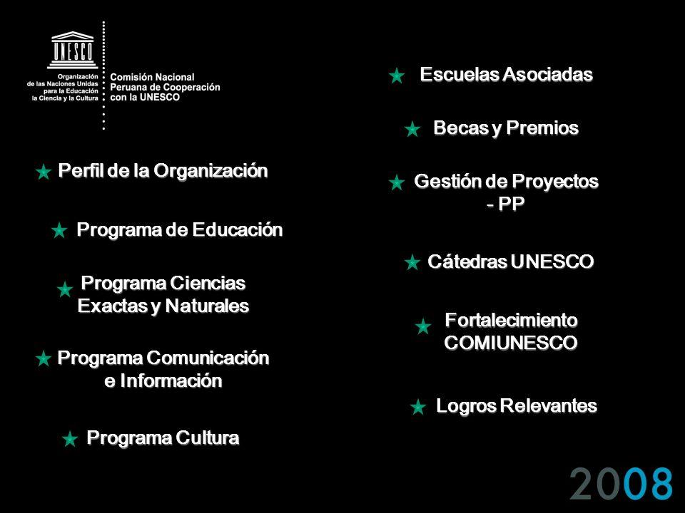 Perfil de la Organización Gestión de Proyectos - PP