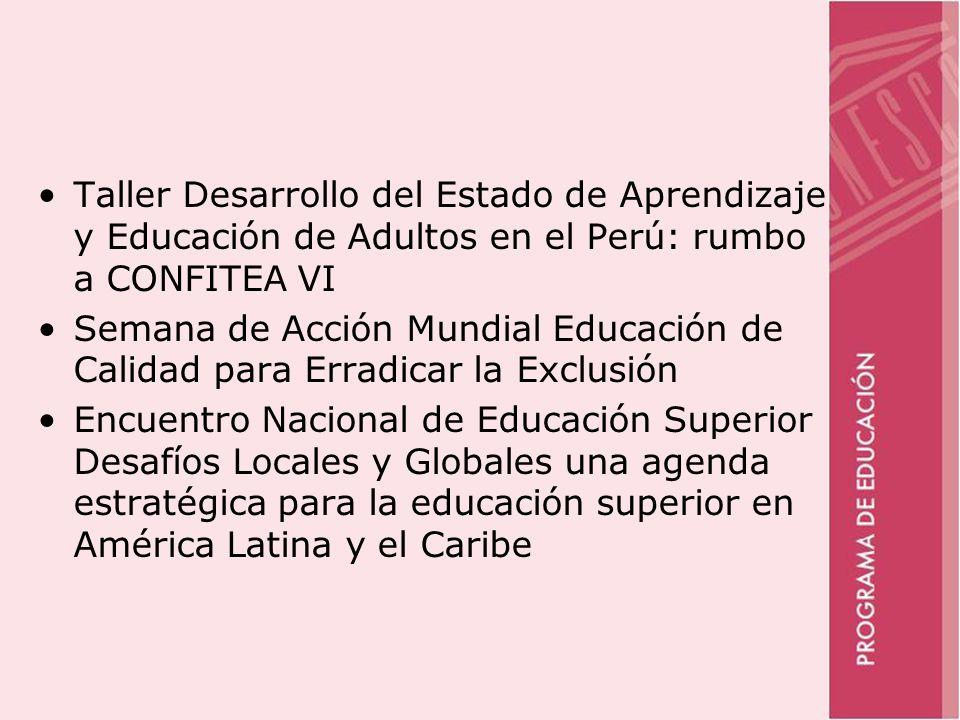 Taller Desarrollo del Estado de Aprendizaje y Educación de Adultos en el Perú: rumbo a CONFITEA VI