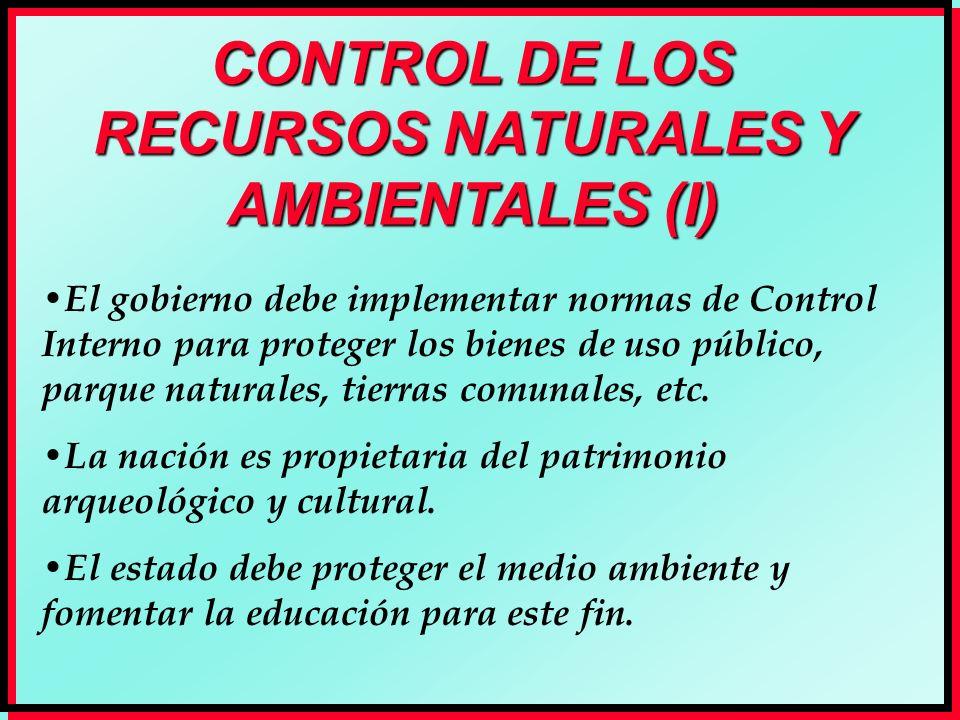 CONTROL DE LOS RECURSOS NATURALES Y AMBIENTALES (I)