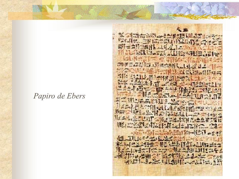 Papiro de Ebers