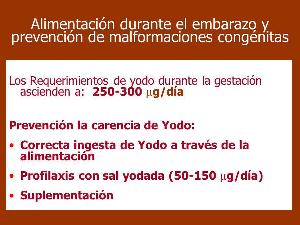 Alimentación durante el embarazo y prevención de malformaciones congénitas