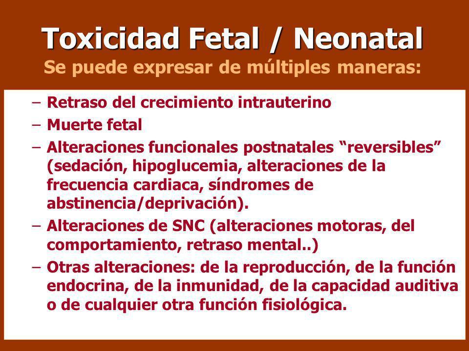 Toxicidad Fetal / Neonatal Se puede expresar de múltiples maneras: