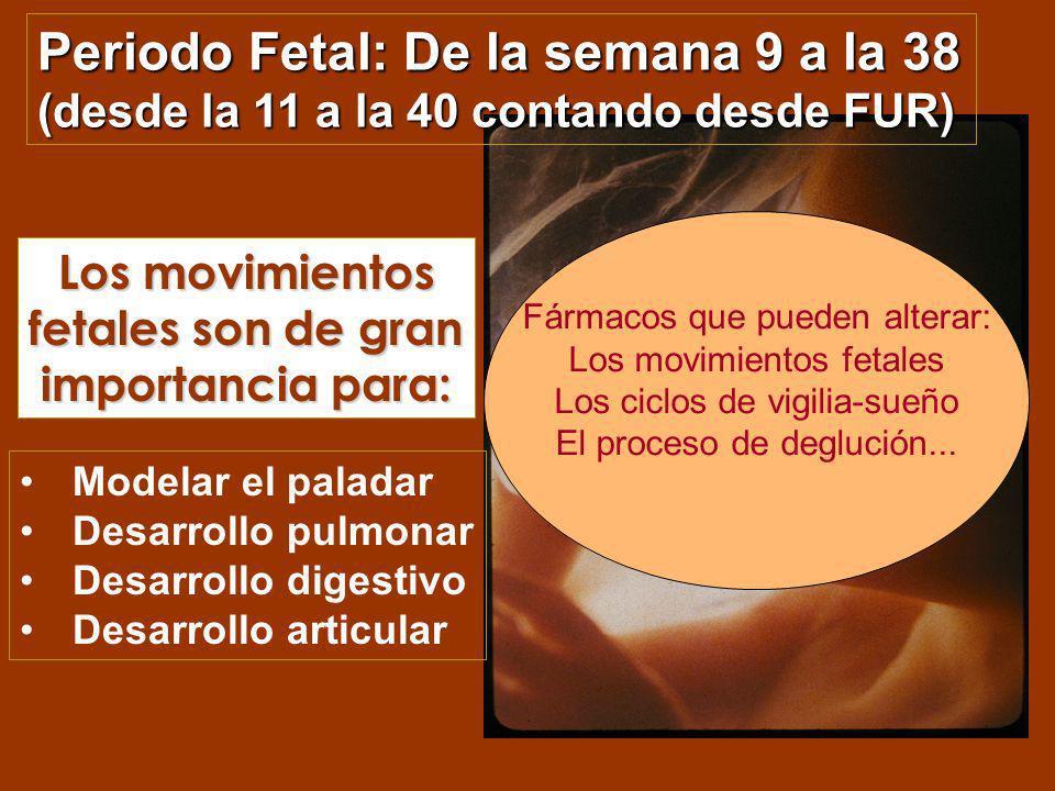 Los movimientos fetales son de gran importancia para: