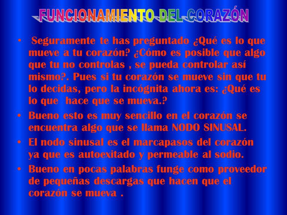 FUNCIONAMIENTO DEL CORAZÓN