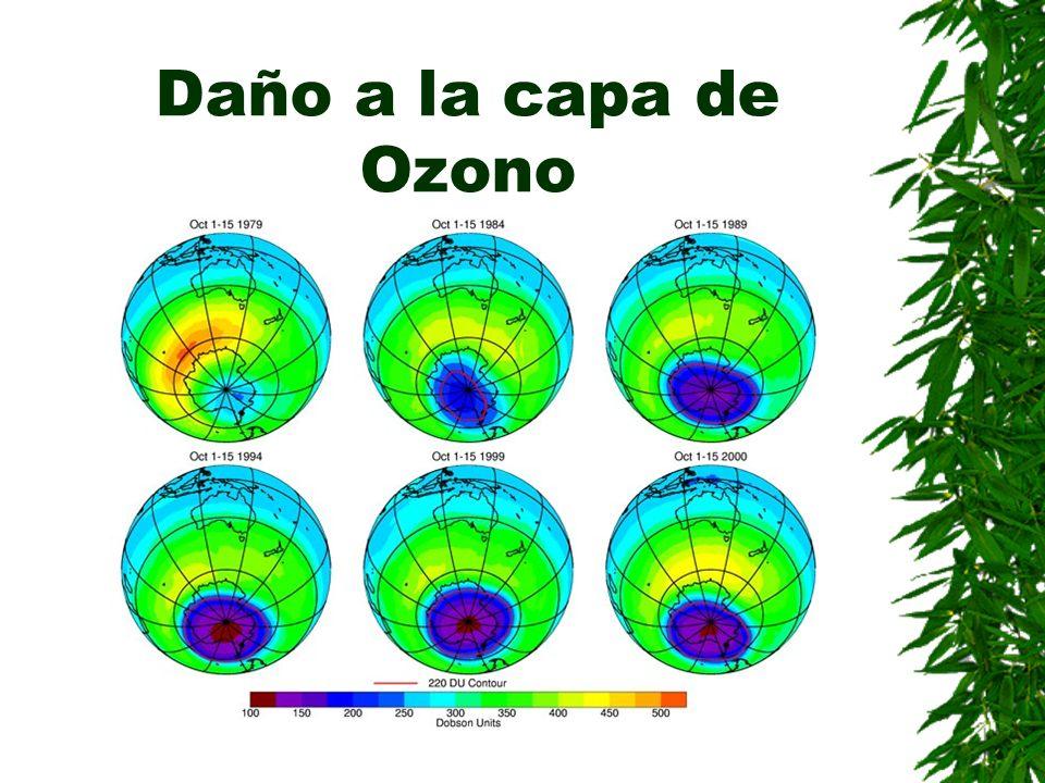 Daño a la capa de Ozono