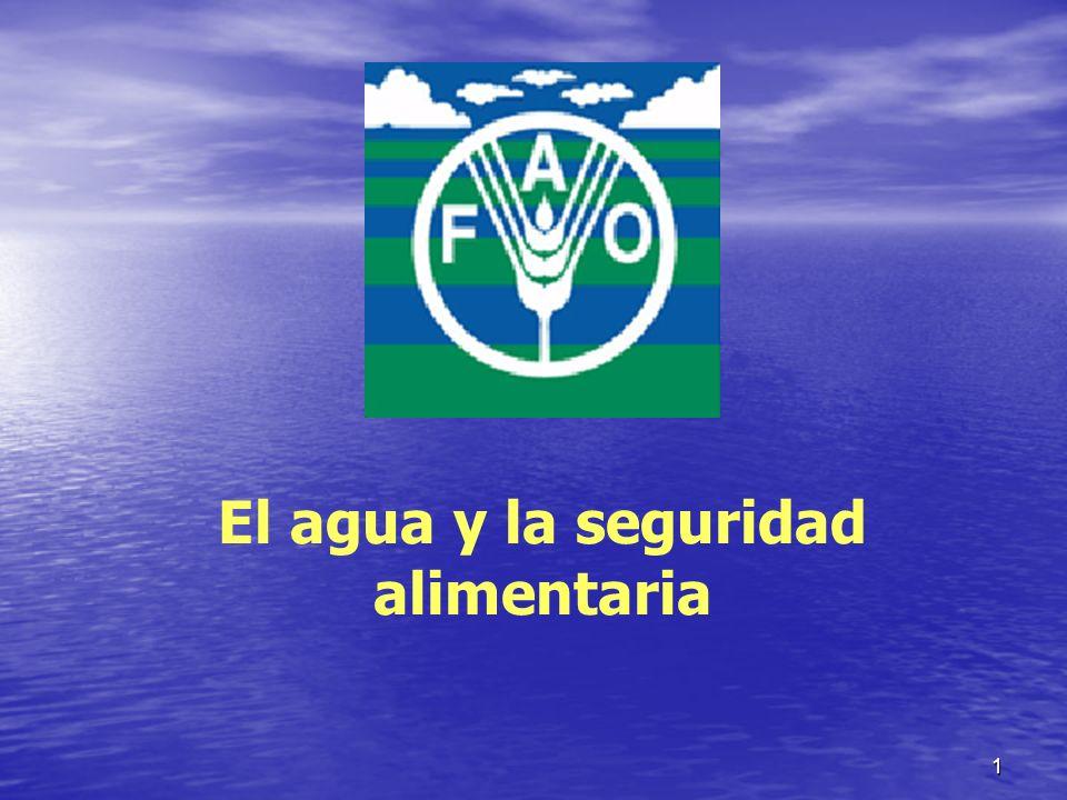 El agua y la seguridad alimentaria