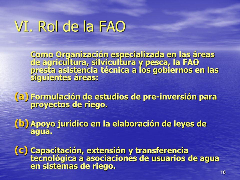 VI. Rol de la FAO