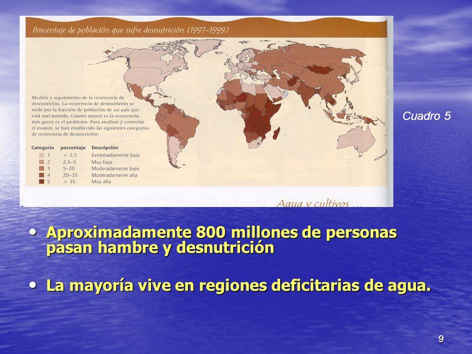Aproximadamente 800 millones de personas pasan hambre y desnutrición
