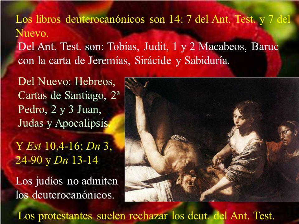 Los libros deuterocanónicos son 14: 7 del Ant. Test. y 7 del Nuevo.