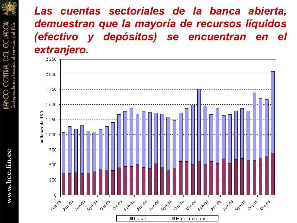 Las cuentas sectoriales de la banca abierta, demuestran que la mayoría de recursos líquidos (efectivo y depósitos) se encuentran en el extranjero.