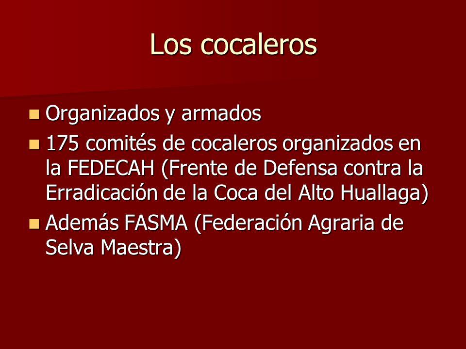 Los cocaleros Organizados y armados
