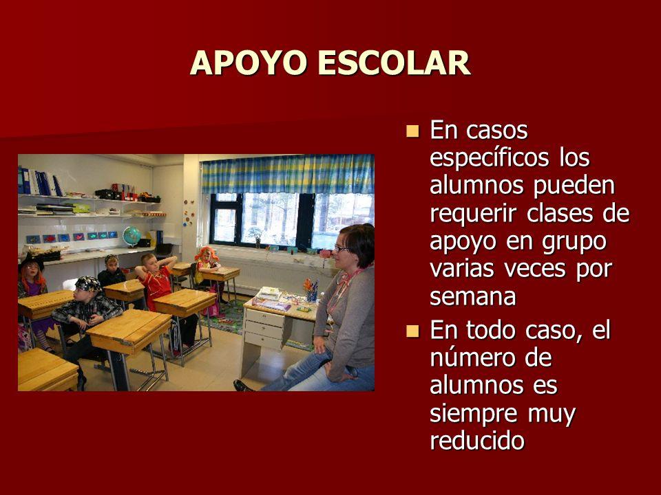 APOYO ESCOLAR En casos específicos los alumnos pueden requerir clases de apoyo en grupo varias veces por semana.