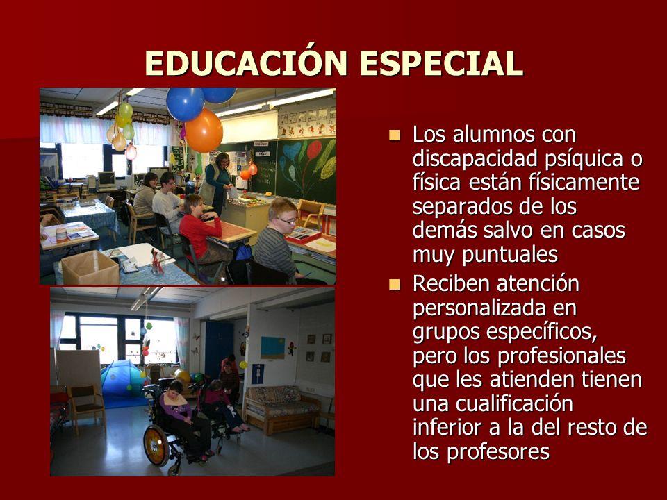 EDUCACIÓN ESPECIAL Los alumnos con discapacidad psíquica o física están físicamente separados de los demás salvo en casos muy puntuales.