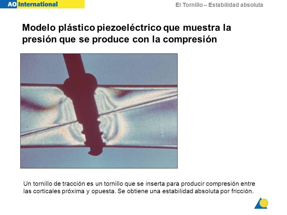 Modelo plástico piezoeléctrico que muestra la presión que se produce con la compresión
