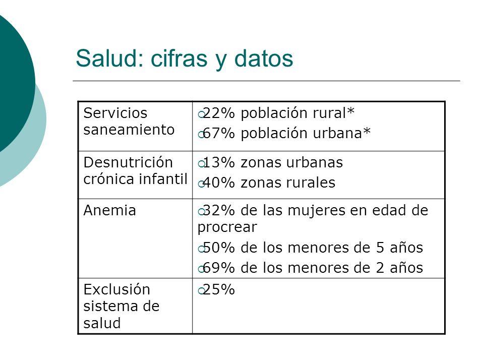 Salud: cifras y datos Servicios saneamiento 22% población rural*