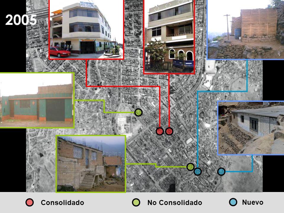 2005 Consolidado No Consolidado Nuevo