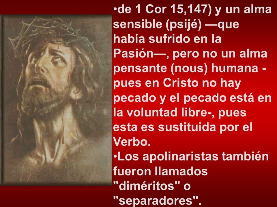 de 1 Cor 15,147) y un alma sensible (psijé) —que había sufrido en la Pasión—, pero no un alma pensante (nous) humana -pues en Cristo no hay pecado y el pecado está en la voluntad libre-, pues esta es sustituida por el Verbo.
