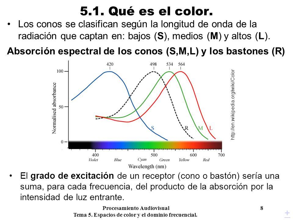 Absorción espectral de los conos (S,M,L) y los bastones (R)