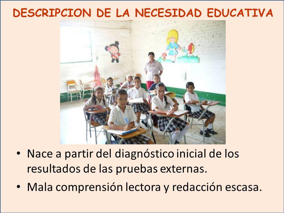 DESCRIPCION DE LA NECESIDAD EDUCATIVA