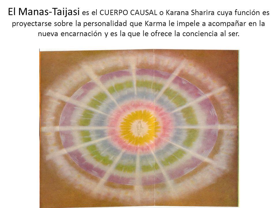 El Manas-Taijasi es el CUERPO CAUSAL o Karana Sharira cuya función es proyectarse sobre la personalidad que Karma le impele a acompañar en la nueva encarnación y es la que le ofrece la conciencia al ser.
