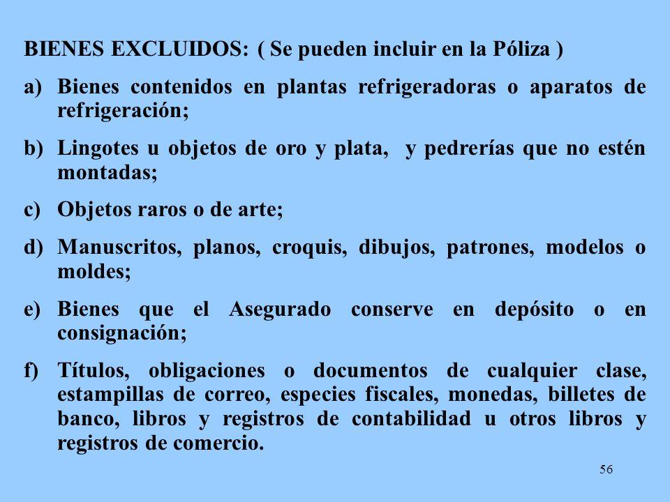 BIENES EXCLUIDOS: ( Se pueden incluir en la Póliza )