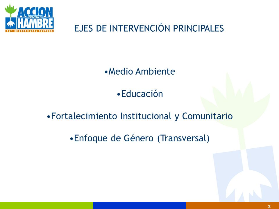 EJES DE INTERVENCIÓN PRINCIPALES