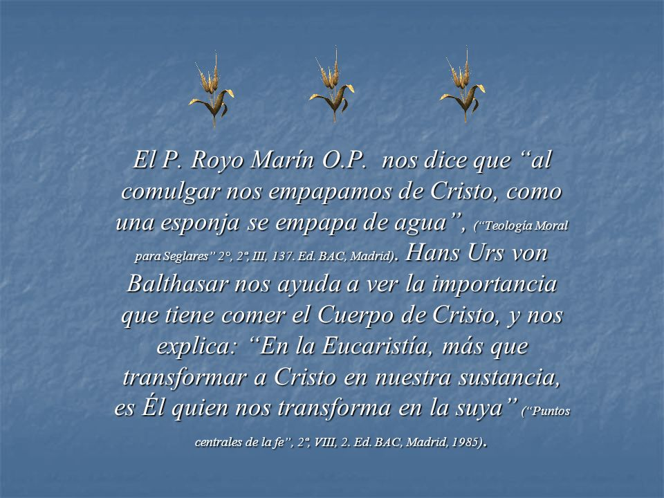 El P. Royo Marín O.P.