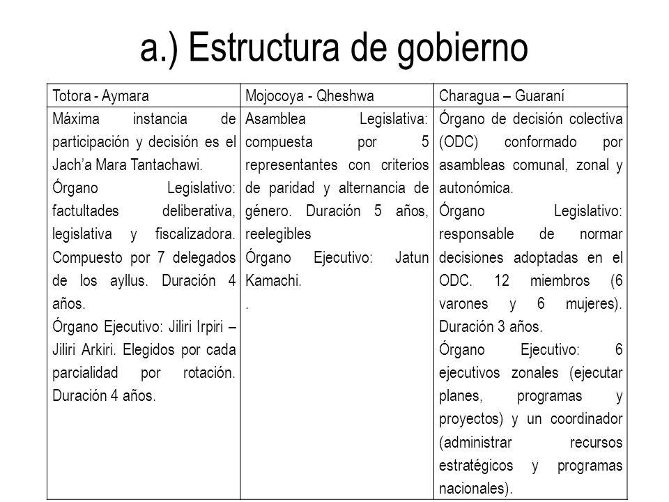 a.) Estructura de gobierno