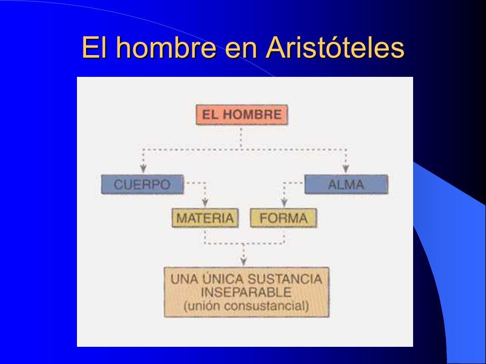 El hombre en Aristóteles