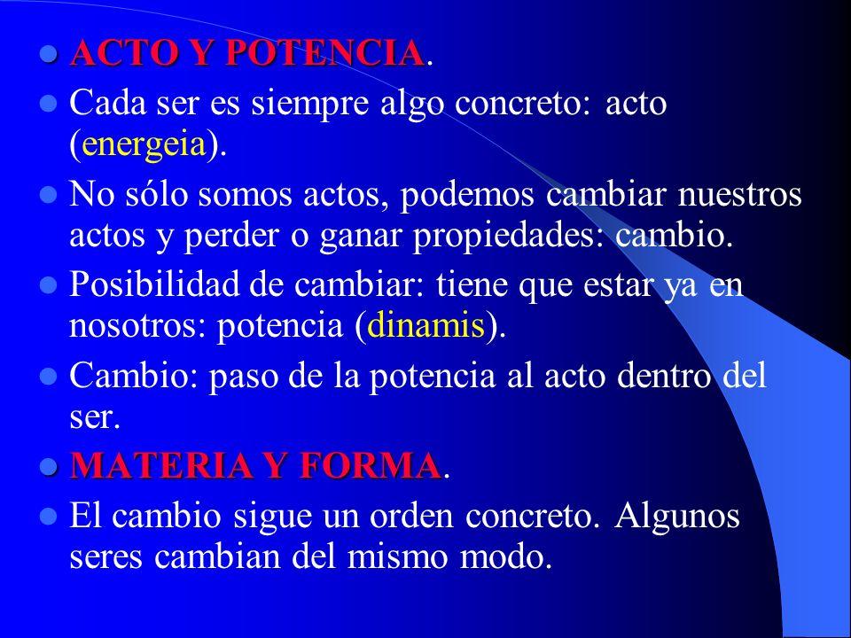 ACTO Y POTENCIA. Cada ser es siempre algo concreto: acto (energeia).