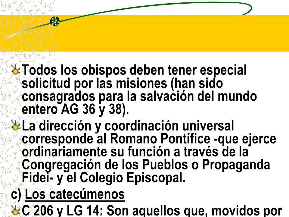 Todos los obispos deben tener especial solicitud por las misiones (han sido consagrados para la salvación del mundo entero AG 36 y 38).
