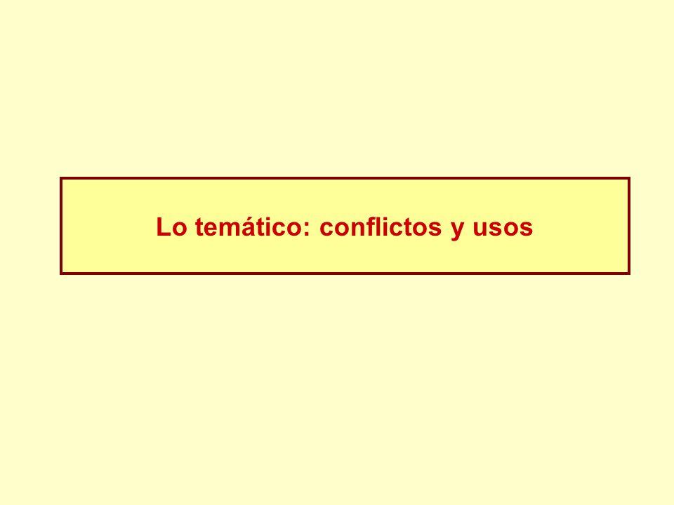 Lo temático: conflictos y usos